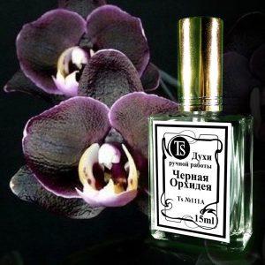 Black Orchid - Черная Орхидея